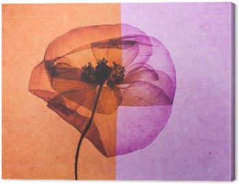 Obraz na Plátně Pěkné Flower