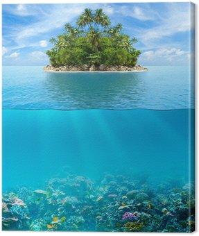 Obraz na Plátně Podvodní korálový útes mořského dna a povrchové vody s tropickým ISL