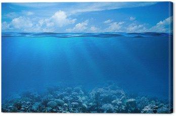 Obraz na Plátně Podvodní korálový útes mořského dna pohled s obzorem a vodní plochy