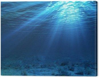 Obraz na Plátně Podvodní krajiny a pozadí s řasami