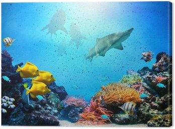 Obraz na Plátně Podvodní scény. Korálový útes, ryba skupiny, žraloci