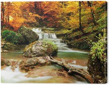 Obraz na Plátně Podzimní potok lesy s žlutými stromy