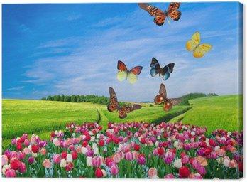 Obraz na Plátně Pole barevných květin a skupina motýl