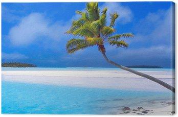 Obraz na Plátně Ráj palm