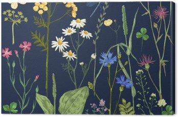 Obraz na Plátně Ručně kreslenými set s bylinkami a květinami