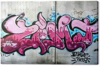 Obraz na Plátně Růžová graffiti v rakouském Salzburgu. Urban umění nebo vandalismus.