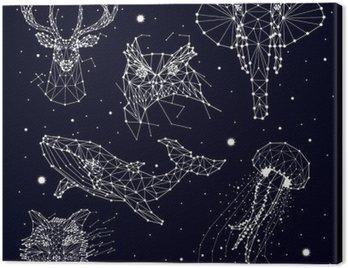 Obraz na Plátně Sada konstelace, slon, sova, jeleni, velryby, medúzy, liška, hvězdy, vektorová grafika