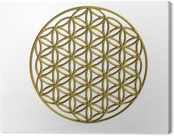 Obraz na Plátně Sakrální symbol Květ života ve 3D