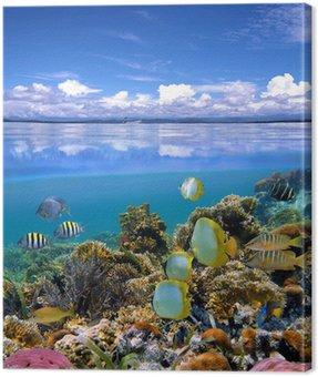 Obraz na Plátně Sky a moře