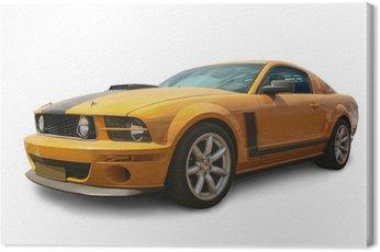 Obraz na Plátně Sporivny auto izolované