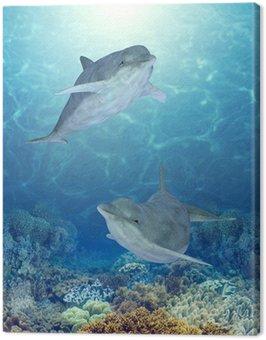 Obraz na Plátně Šťastné Delfíni