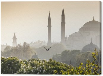 Obraz na Plátně Sultanahmet Camii / Blue Mosque, Istanbul, Turkey