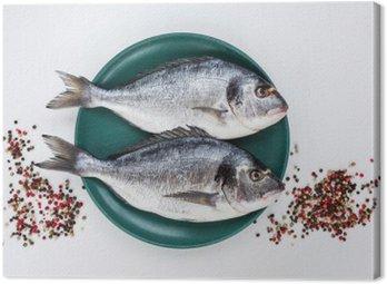 Obraz na Plátně Syrové ryby dorado na žlutém štítku s pepřem na bílém stole. Pohled shora, copy space