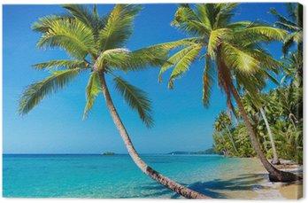 Obraz na Plátně Tropické pláže, Thajsko