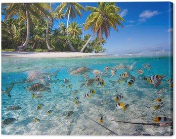 Obraz na Plátně Tropický ostrov