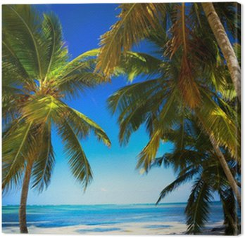 Obraz na Plátně Umění léto Nedotčená tropické pláže
