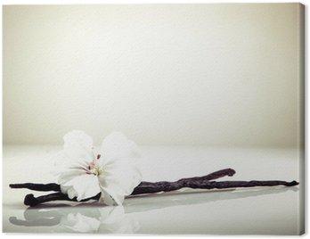 Obraz na Plátně Vanilkové a Flower