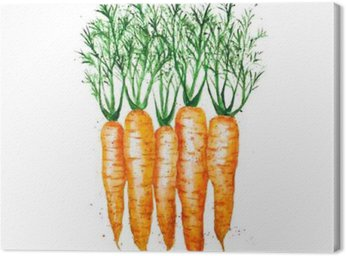 Obraz na Plátně Vektor akvarel mrkev, izolovaných na bílém pozadí