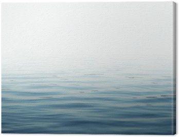Obraz na Plátně Vodní plocha