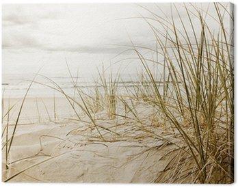 Obraz na Plátně Zblízka vysoké trávě na pláži během zatažené sezóny