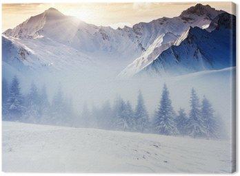 Obraz na Plátně Zima