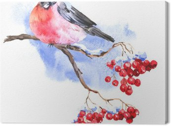 Obraz na Plátně Zimní akvarel pozadí s bullfinches