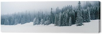 Obraz na Plátně Zimní bílý les se sněhem, vánoční pozadí