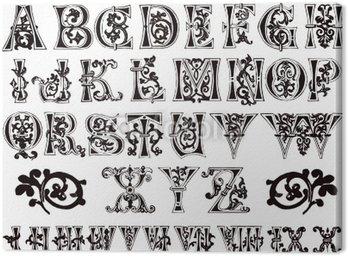 11th century grawerowane ozdobne alfabet i cyfry