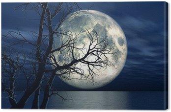 Obraz na Płótnie 3d tle krajobraz z księżyca i drzewa