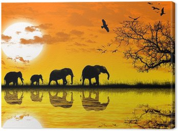 Obraz na Płótnie Afryka