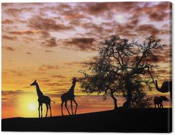 Obraz na Płótnie Afrykański zachód słońca