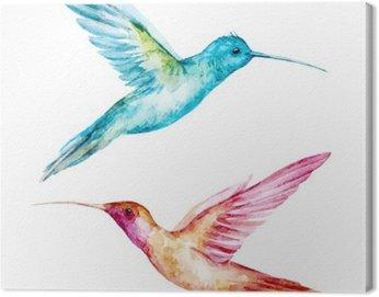 Obraz na Płótnie Akwarela Colibri ptak