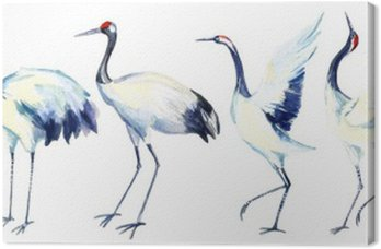 Obraz na Płótnie Akwarela Żuraw azjatycki zestaw ptaka