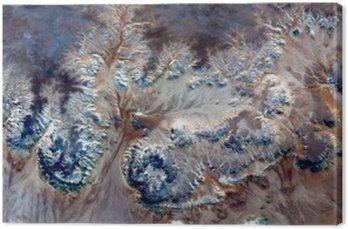 Obraz na Płótnie Alegoria podwodne kwiaty, Kamień roślin fantasy, abstrakcyjne Naturalizm, abstrakcyjna stock pustynie Afryki z powietrza, streszczenie surrealizm, Miraż, formy fantazji na pustyni, rośliny, kwiaty, liście,