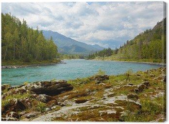 Obraz na Płótnie Altai rzeki Katun