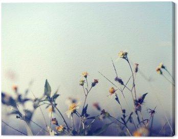 Obraz na Płótnie Archiwalne zdjęcie tle charakter z dzikich kwiatów i roślin