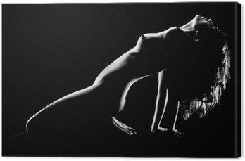 Artystyczne nagie kobiety w studio