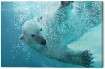 Obraz na Płótnie Atak niedźwiedzia polarnego pod wodą