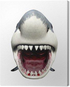 Obraz na Płótnie Atak rekina