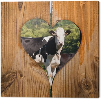 Obraz na Płótnie Background Krowy drewniane serce