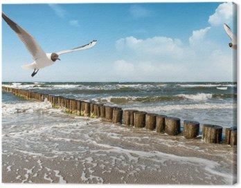 Obraz na Płótnie Baltic Beach