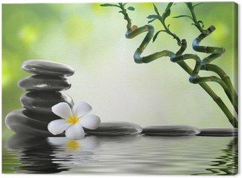Obraz na Płótnie Bambus i frangipani w salonie spa