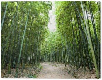 Obraz na Płótnie Bambusowy las