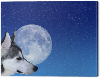 Obraz na Płótnie Bark at the Moon