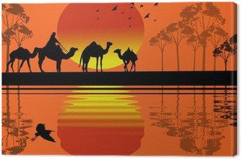 Obraz na Płótnie Beduin wielbłąda karawana