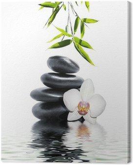 Obraz na Płótnie Biała orchidea kwiat bambusa końca
