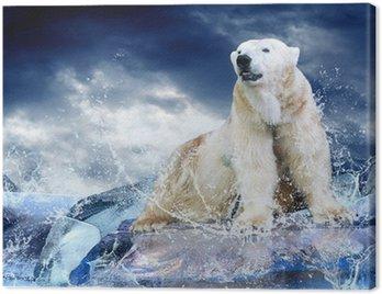 Obraz na Płótnie Biały niedźwiedź polarny Hunter na lodzie w kropli wody.