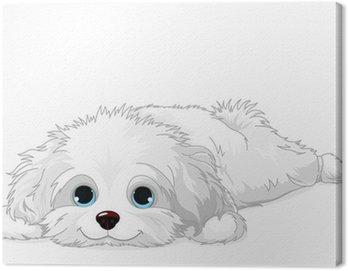 Obraz na Płótnie Biały szczeniak