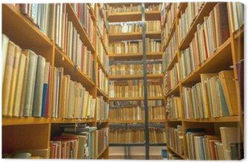 Obraz na Płótnie Biblioteka wnętrze z książkami
