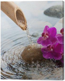 Bieżącej wody na kamieniach obok kwiatów